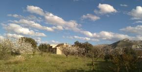 Finca Margarita Spring